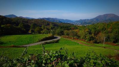 43.牧草地から稲川方面