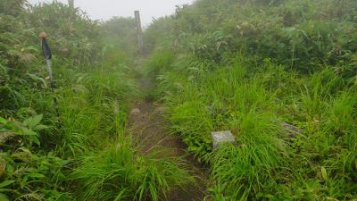 koyamabu4_02.jpg
