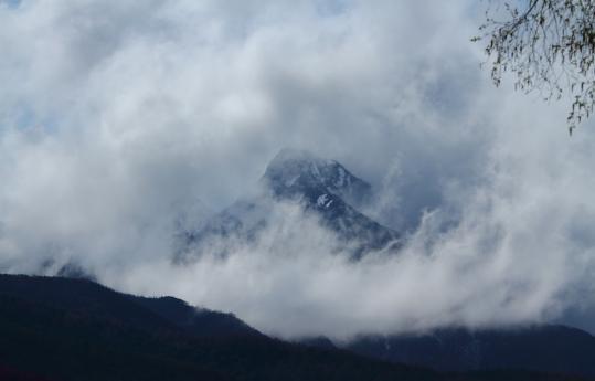 2012.05.11-八ヶ岳-16