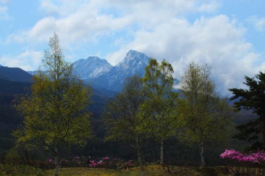 2012.05.11-八ヶ岳-17
