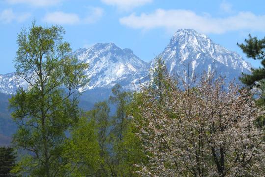 2012.05.19-八ヶ岳-6
