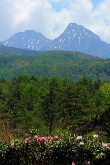 2012.05.27-八ヶ岳-15
