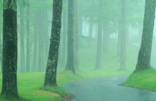 2012.06.09-霧の職場-9