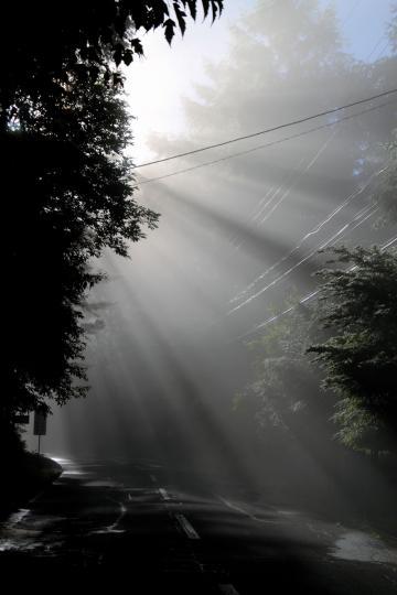 2012.07.04-朝きり-4