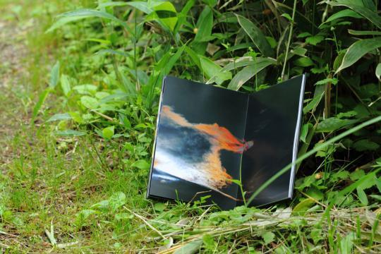2012.07.24-森の奥-9