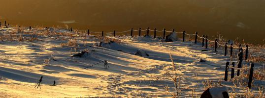 森の冬2010.01.16-0001-(50)