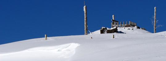 森の冬2010.01.16-0001-(69)