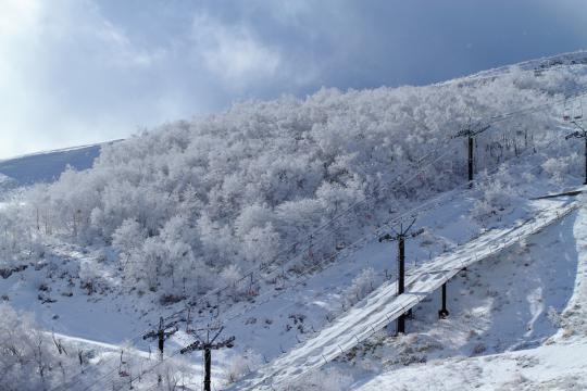 2012.12.19-霧氷-11