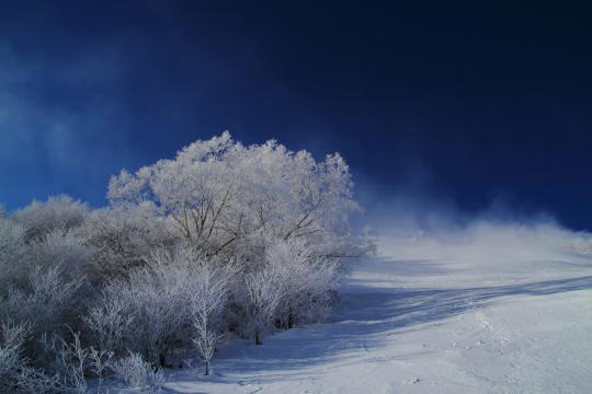 2012.12.19-霧氷-2