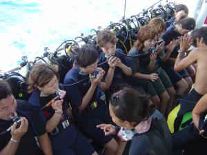 プーケットダイビング 体験ダイビング参考資料