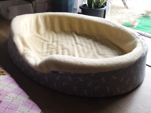 マックスのベッド