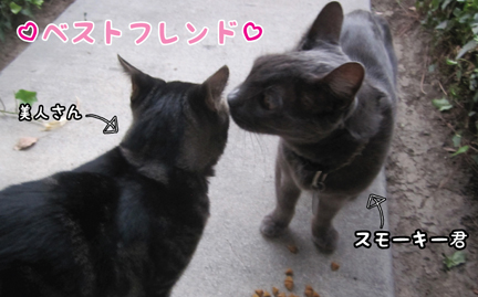 bestfriend_10082012-01.jpg