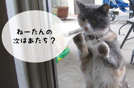 coz_10172012-01.jpg