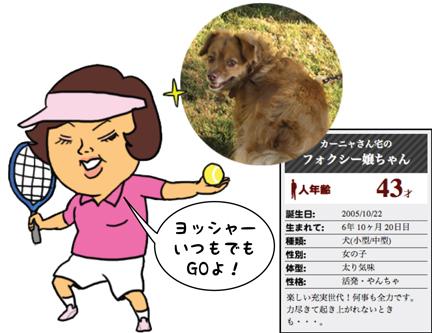 fox_09242012-01.jpg