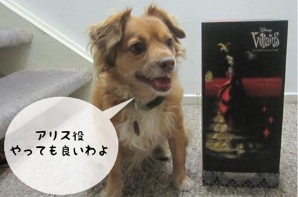 fox_09252012-01.jpg