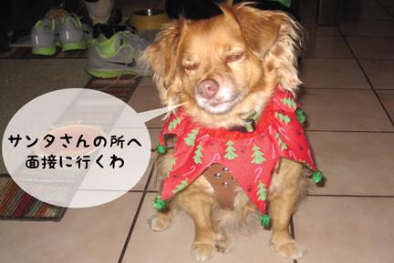 fox_12042012-01.jpg