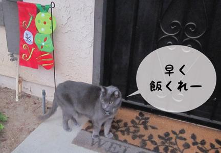 smoky_11292012-01.jpg