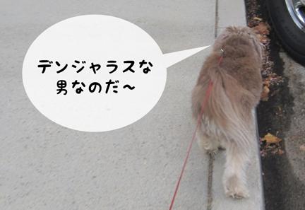zig2_10172012-01.jpg