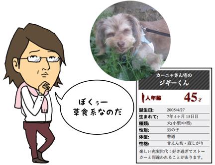 zig_09242012-01.jpg