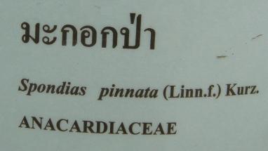 マコークパー名札