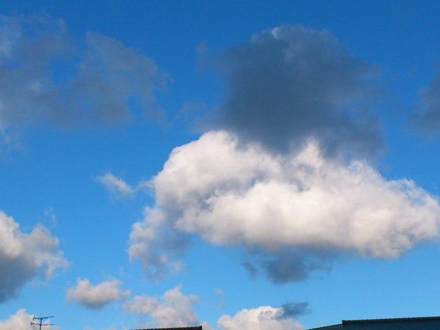 2012-12-11-DSC_0043.jpg
