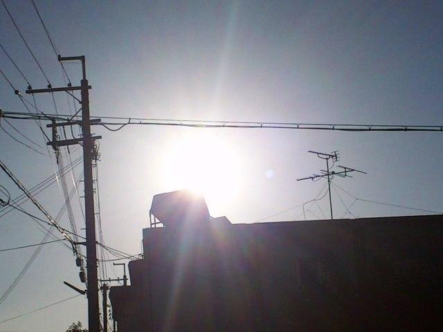 2012-12-13DSC_0051.jpg