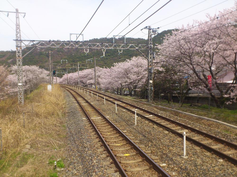2013-04-02-HIRU10.jpg