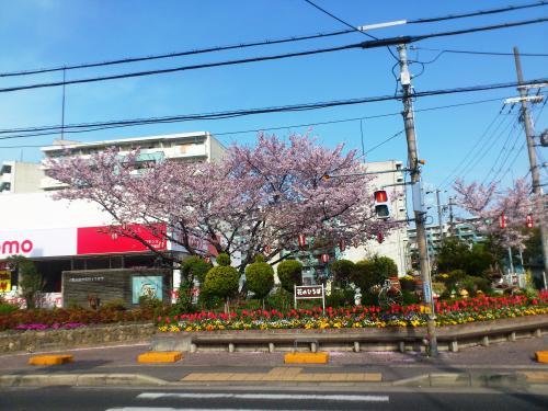 2013-04-04-ASA3.jpg