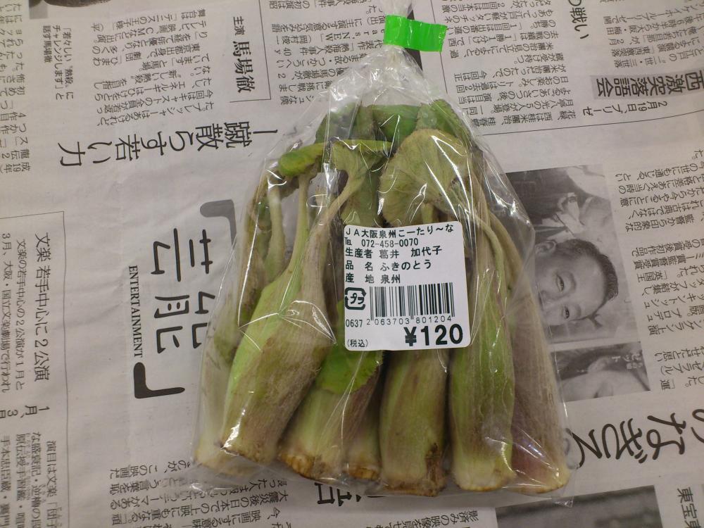 2013-02-25-野菜3