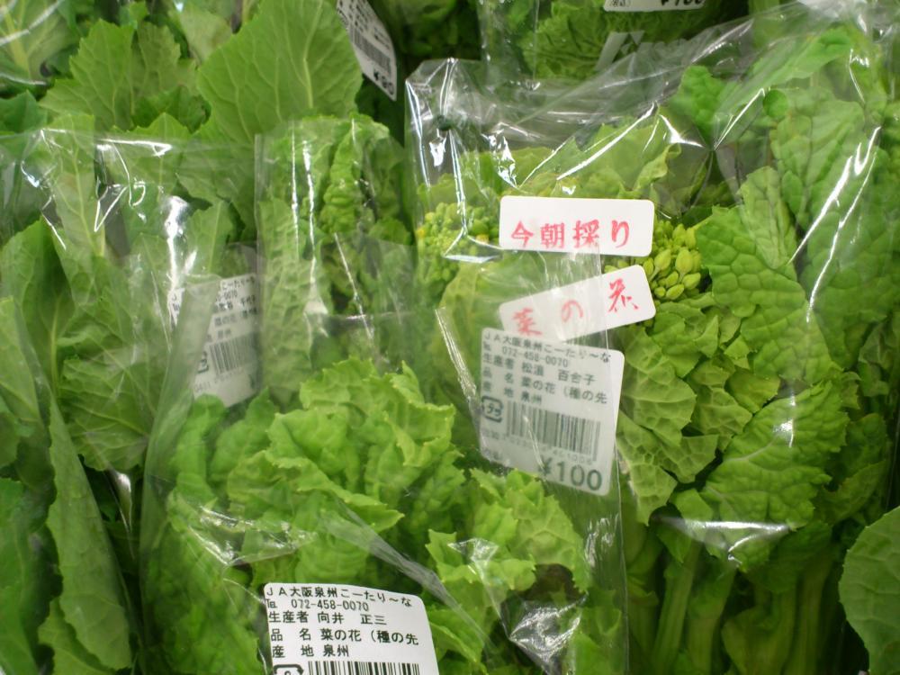 2013-02-25-野菜1