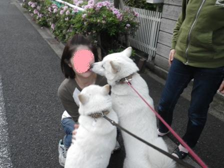 2012.4.28 お姉さんに会えてうれしいな