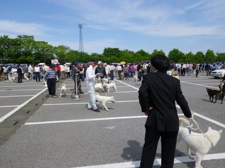 2012.5.13 審査の様子