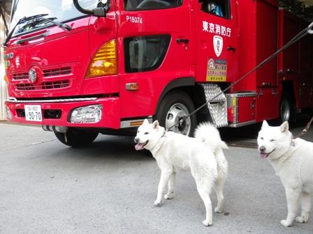 2012.5.27 消防車と