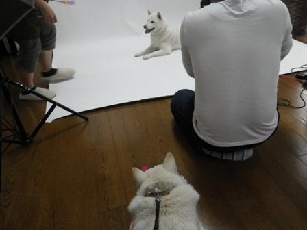2012.6.4 撮影2