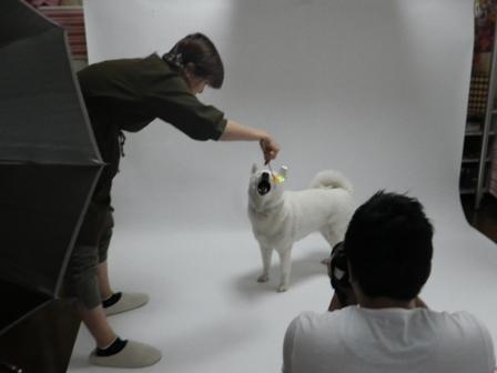2012.6.4 撮影1