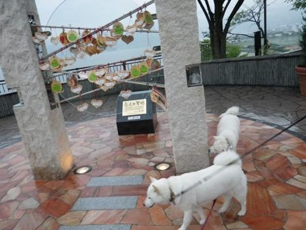 2012.6.3 諏訪湖SA3