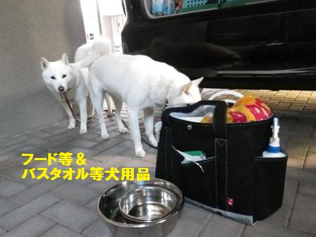 2012.6.14 花&花鈴の荷物