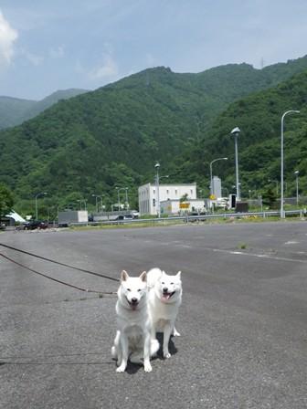 2012.6.15 谷川岳PAにて