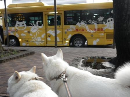 2012.6.22 三鷹の森ジブリ美術館・バス
