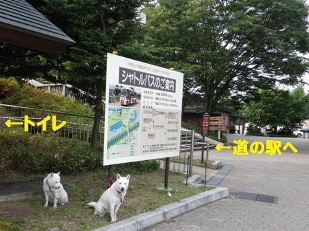 2012.6.25 小布施ハイウエイオアシス1