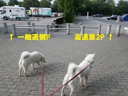 2012.6.25 小布施ハイウエイオアシス2
