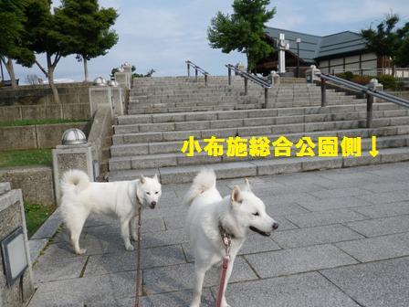 2012.6.25 小布施ハイウエイオアシス6