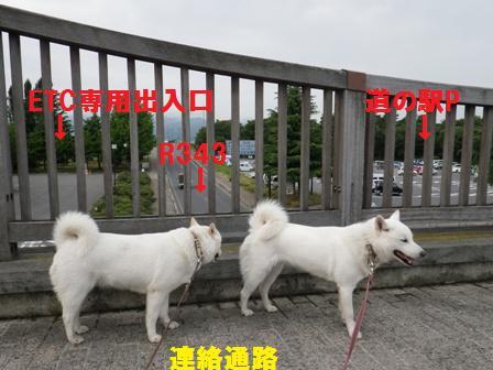 2012.6.25 小布施ハイウエイオアシス3