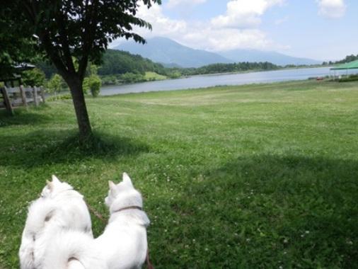 2012.6.25 a 霊仙寺湖湖畔