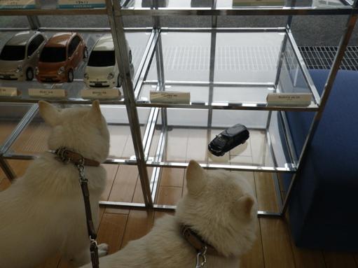 2012.7.5 TOYOTA世田谷店にて2