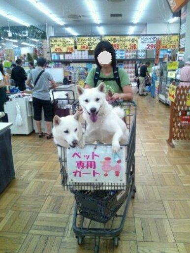 2012.7.2 店内を廻るよ~