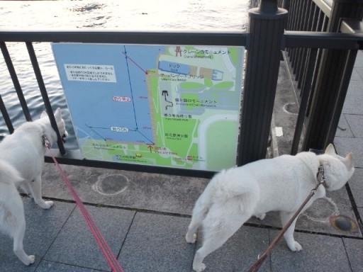 2012.7.2 都立豊洲公園