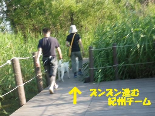 2012.7.4 三橋公園2
