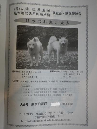 2012.7.23 広告