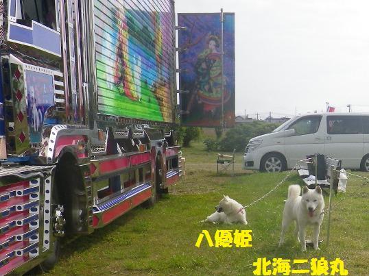 2012.7.22 八優姫(はっちゃん)&北海二狼(ジロウ)そしてデコトラ